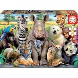 Puzzle 300 pièces - Photo...