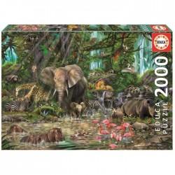 Puzzle 2000 pièces - Jungle...